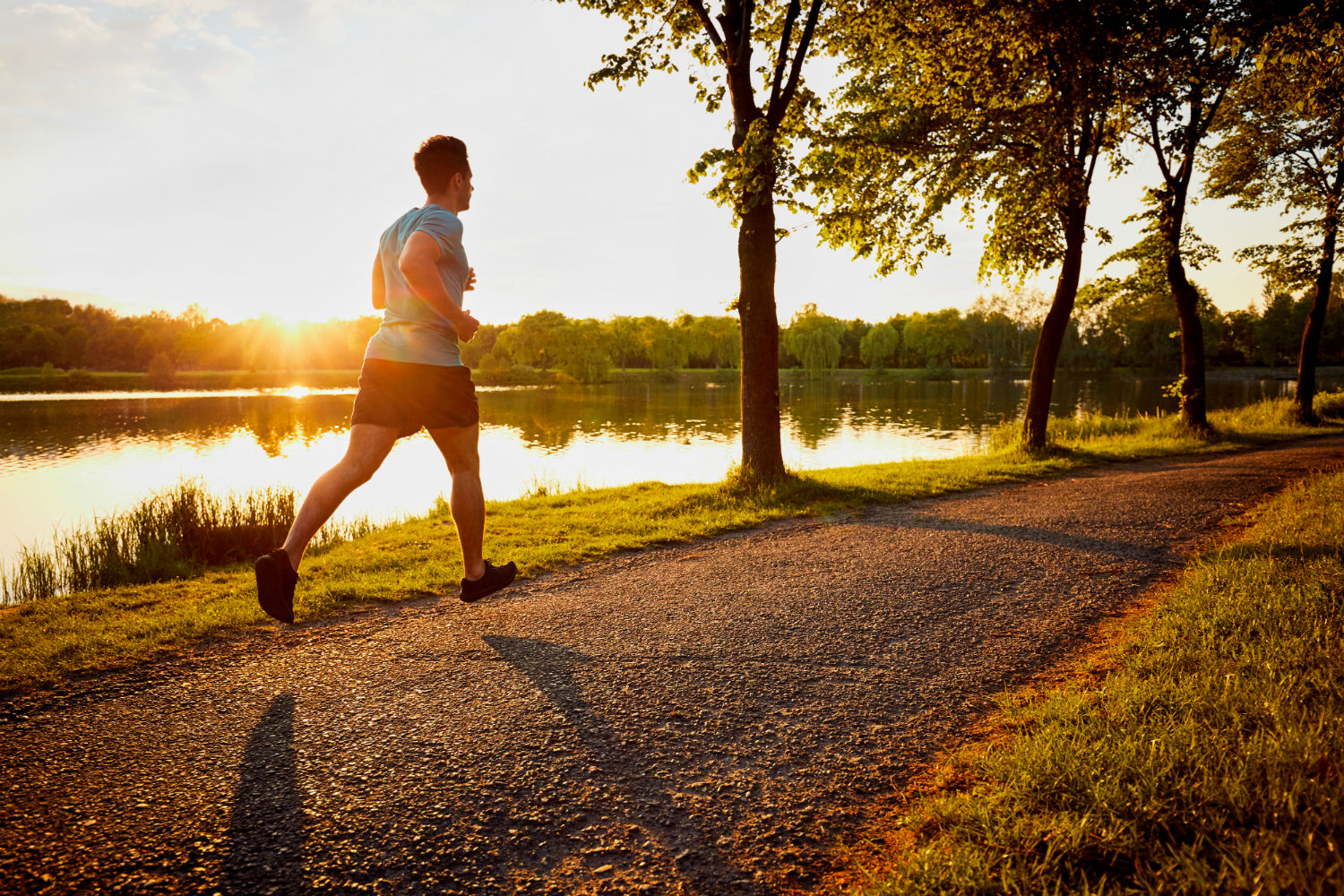 Why You Should Have a Regular Exercise Routine